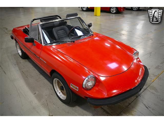 1979 Alfa Romeo Spider (CC-1435642) for sale in O'Fallon, Illinois