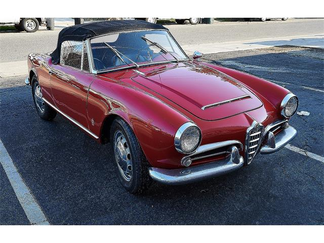 1962 Alfa Romeo Giulietta Spider (CC-1435850) for sale in Port Washington, New York