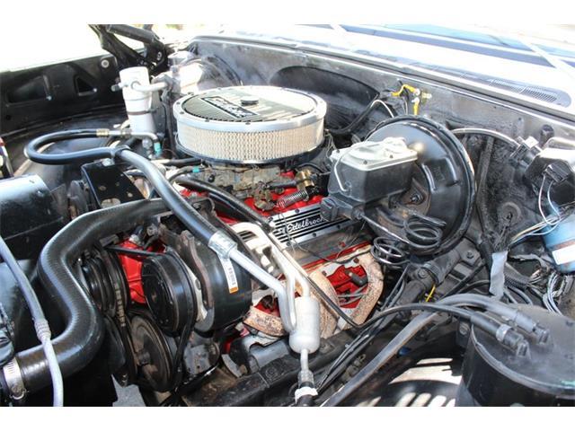 1977 Chevrolet Silverado (CC-1435925) for sale in Greensboro, North Carolina