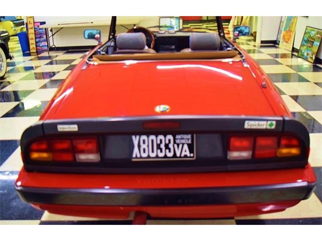 1988 Alfa Romeo Quadrifoglio (CC-1436058) for sale in Fredericksburg, Virginia