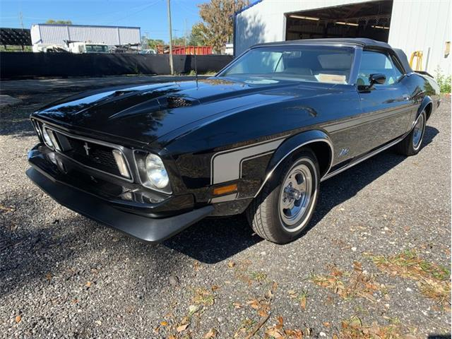 1973 Ford Mustang (CC-1436181) for sale in Greensboro, North Carolina