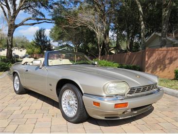 1995 Jaguar XJS (CC-1436466) for sale in Lakeland, Florida