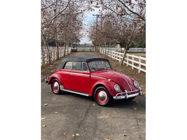 1965 Volkswagen Beetle (CC-1436480) for sale in Cadillac, Michigan