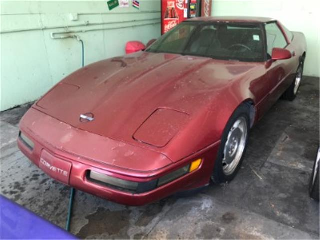 1995 Chevrolet Corvette (CC-1436538) for sale in Miami, Florida