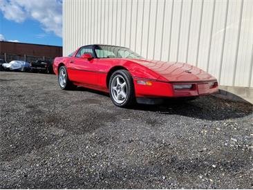 1990 Chevrolet Corvette (CC-1437105) for sale in Lakeland, Florida