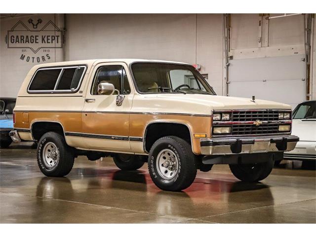 1991 Chevrolet Blazer (CC-1437170) for sale in Grand Rapids, Michigan