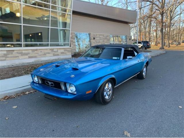 1973 Ford Mustang (CC-1437492) for sale in Cadillac, Michigan