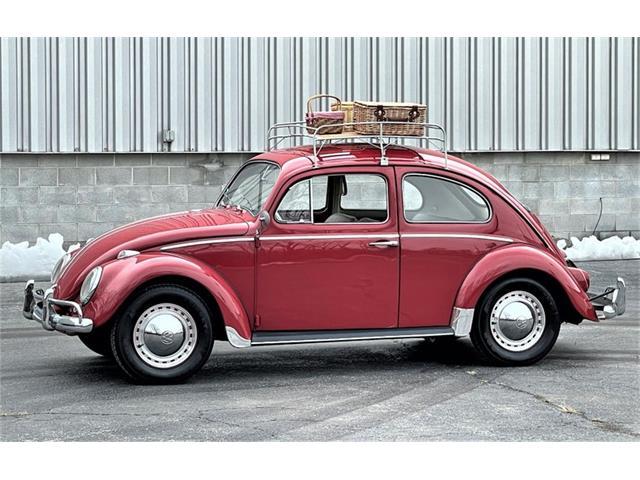 1964 Volkswagen Beetle (CC-1437744) for sale in Alsip, Illinois