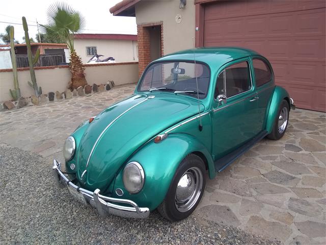 1966 Volkswagen Beetle (CC-1438599) for sale in San Ysidro, California