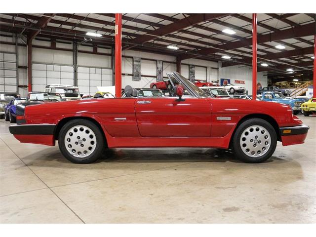 1986 Alfa Romeo Spider (CC-1430086) for sale in Kentwood, Michigan