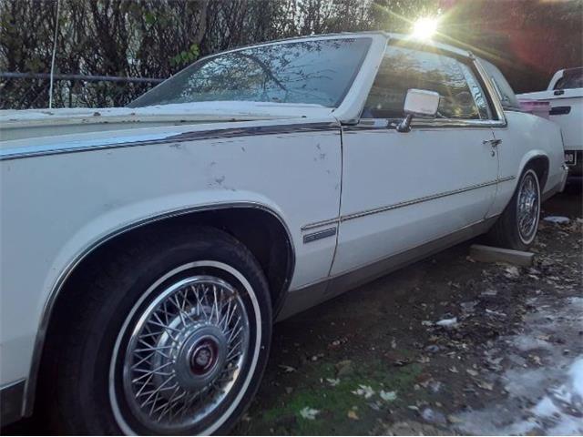 1982 Cadillac Eldorado (CC-1438733) for sale in Cadillac, Michigan