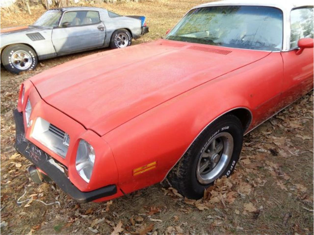 1975 Pontiac Firebird (CC-1438736) for sale in Cadillac, Michigan