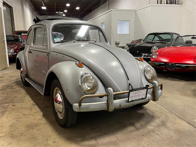 1963 Volkswagen Beetle (CC-1438882) for sale in CLEVELAND, Ohio