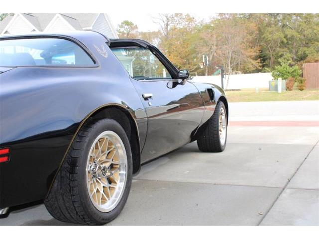 1978 Pontiac Firebird Trans Am (CC-1439023) for sale in Cadillac, Michigan