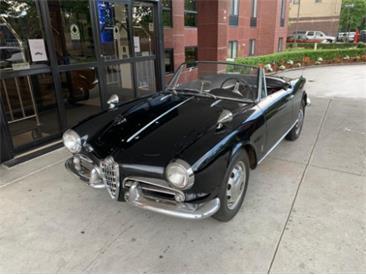 1962 Alfa Romeo Giulietta Spider (CC-1439087) for sale in Astoria, New York