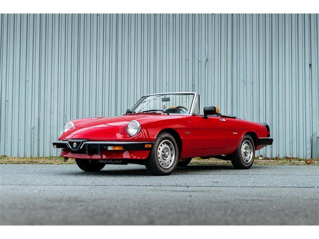 1987 Alfa Romeo Spider (CC-1439211) for sale in Pontiac, Michigan