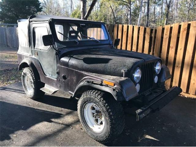 1983 Jeep CJ5 (CC-1439400) for sale in Cadillac, Michigan
