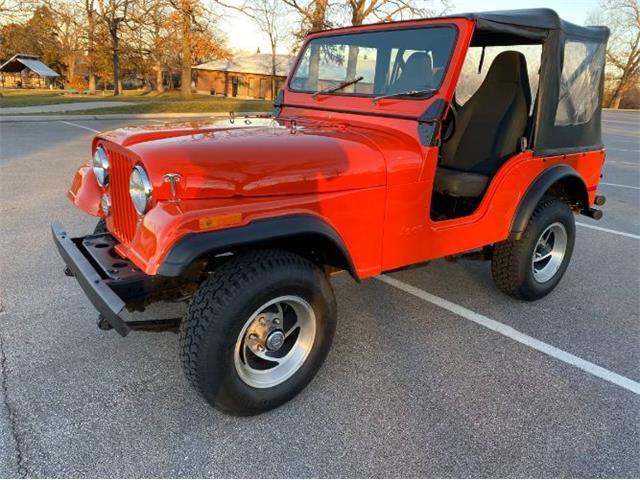 1979 Jeep CJ5 (CC-1439656) for sale in Cadillac, Michigan