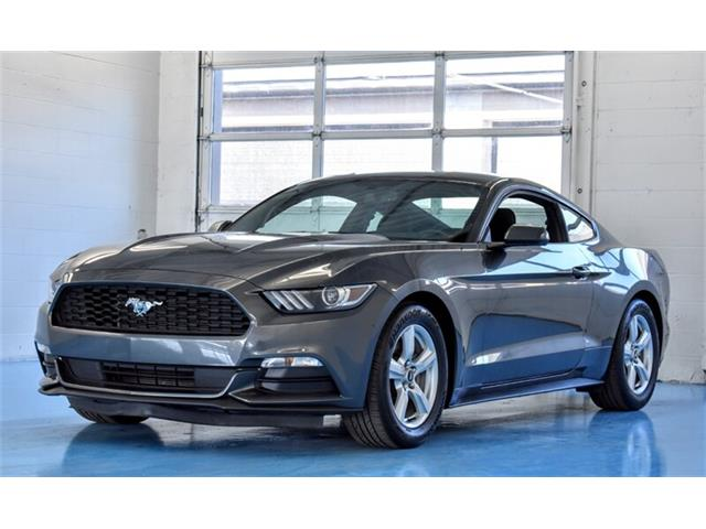 2017 Ford Mustang (CC-1439744) for sale in Springfield, Ohio