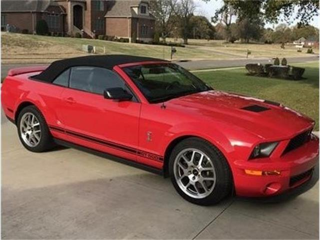 2008 Shelby GT500 (CC-1439969) for sale in Paducah , Kentucky