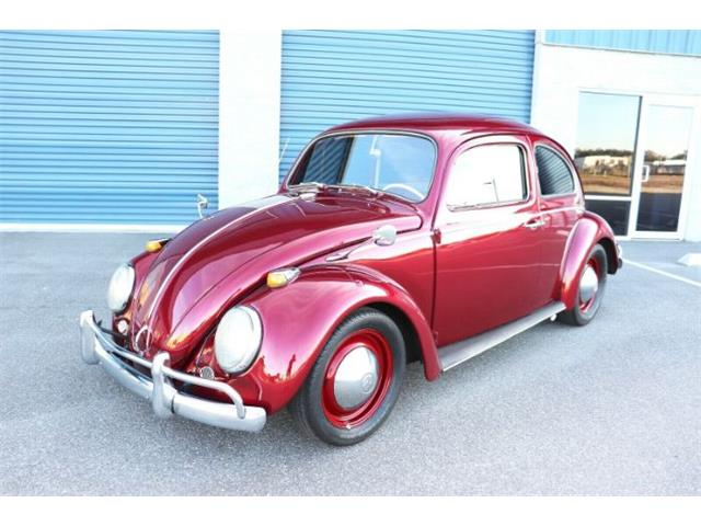 1963 Volkswagen Beetle (CC-1441339) for sale in Cadillac, Michigan