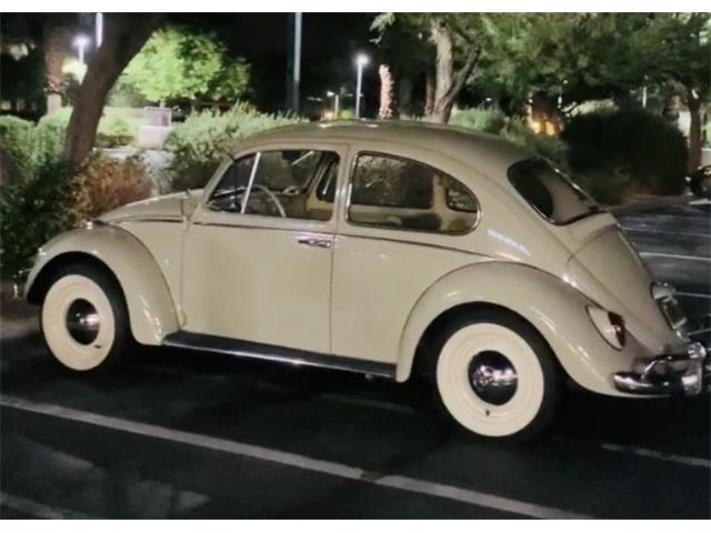 1965 Volkswagen Beetle (CC-1440014) for sale in Palm Springs, California