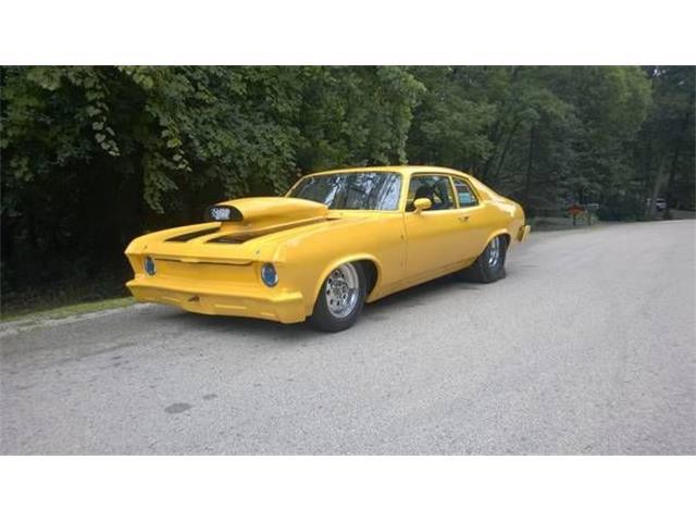1973 Chevrolet Nova (CC-1444609) for sale in Cadillac, Michigan