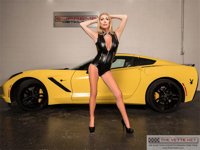 2016 Chevrolet Corvette (CC-1444978) for sale in Sarasota, Florida