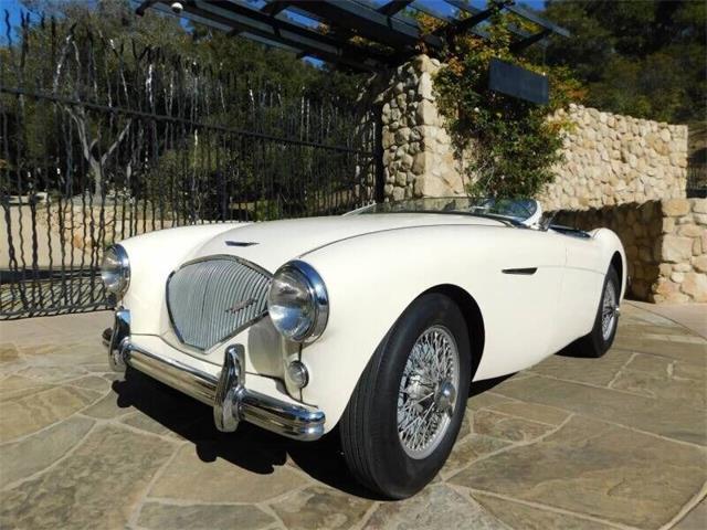 1954 Austin-Healey 100-4 (CC-1445013) for sale in Santa Barbara, California
