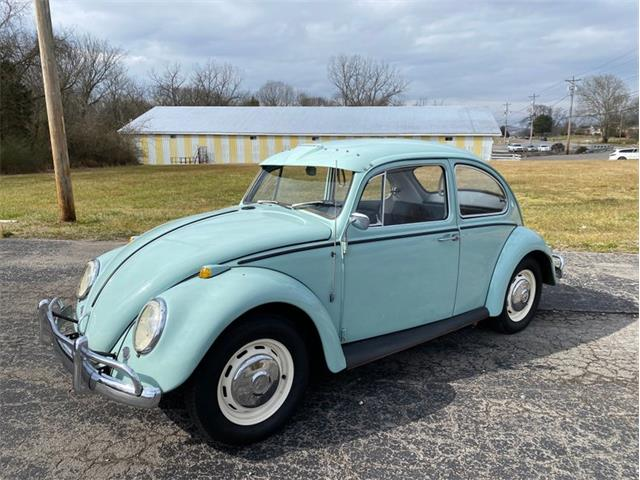 1966 Volkswagen Beetle (CC-1445030) for sale in Carthage, Tennessee