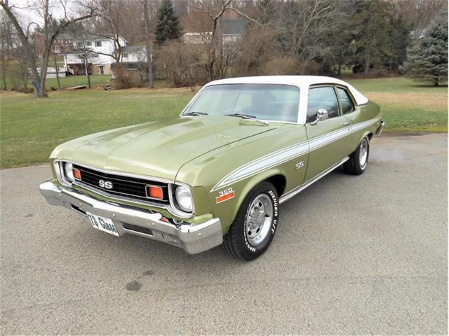 1973 Chevrolet Nova (CC-1440603) for sale in Greensboro, North Carolina