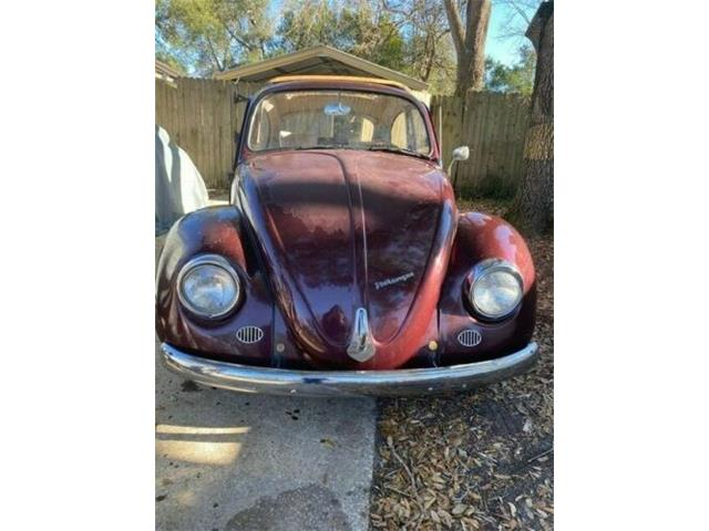 1967 Volkswagen Beetle (CC-1446351) for sale in Cadillac, Michigan