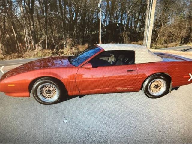 1991 Pontiac Firebird Trans Am (CC-1446372) for sale in Cadillac, Michigan