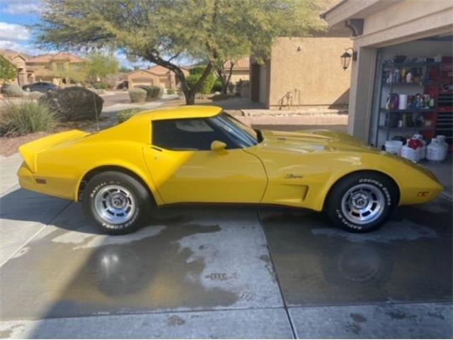 1975 Chevrolet Corvette (CC-1446906) for sale in Cadillac, Michigan