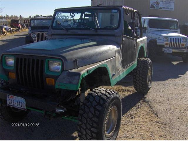 1991 Jeep Wrangler (CC-1447221) for sale in Cadillac, Michigan