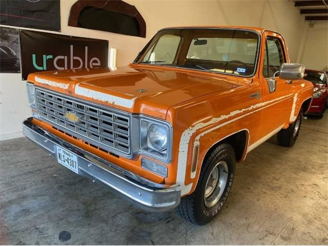 1976 Chevrolet C10 (CC-1447649) for sale in Cadillac, Michigan