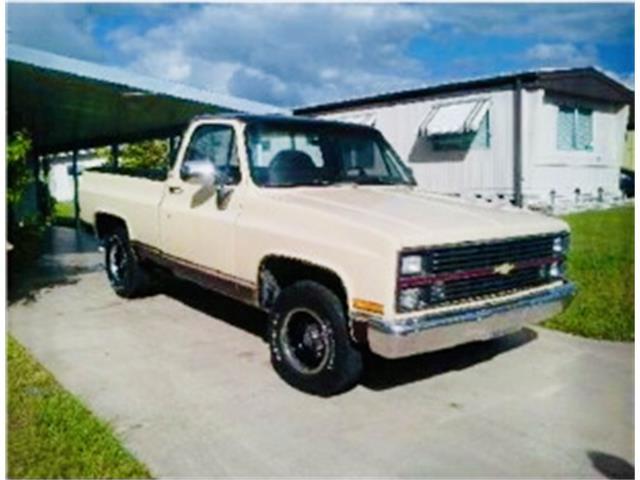 1983 Chevrolet C10 (CC-1447688) for sale in Lakeland, Florida