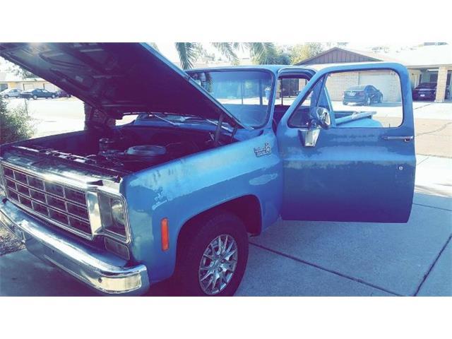1979 Chevrolet C10 (CC-1448217) for sale in Cadillac, Michigan