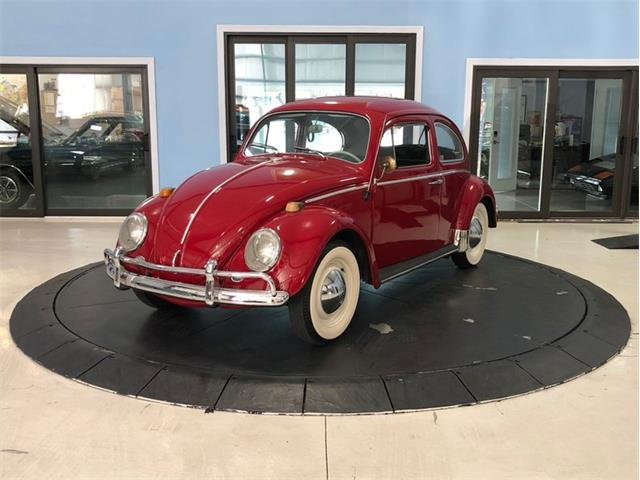 1964 Volkswagen Beetle (CC-1448284) for sale in Palmetto, Florida