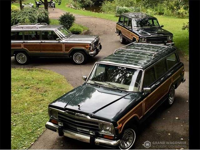 1989 Jeep Grand Wagoneer (CC-1448392) for sale in BEMUS POINT, New York