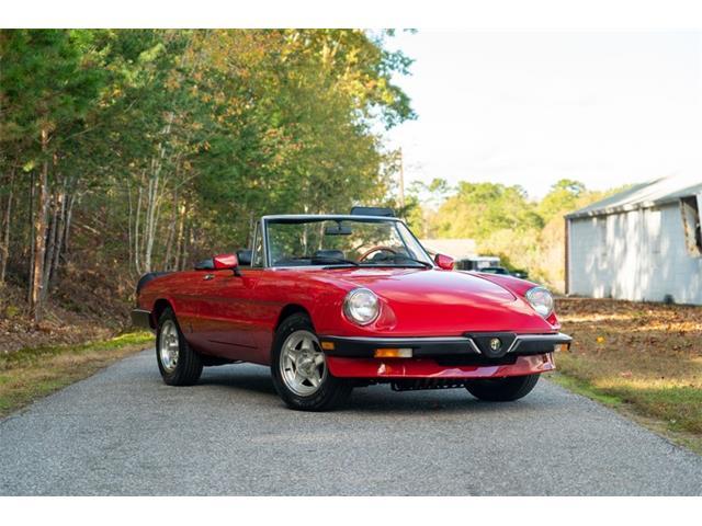 1985 Alfa Romeo Spider (CC-1440880) for sale in Hickory, North Carolina