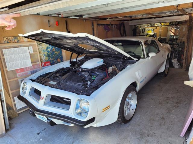 1974 Pontiac Firebird Trans Am (CC-1449868) for sale in San Luis Obispo, California