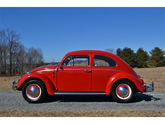 1963 Volkswagen Beetle (CC-1451935) for sale in Moneta, Virginia