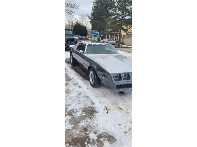 1980 Pontiac Firebird (CC-1452666) for sale in Cadillac, Michigan