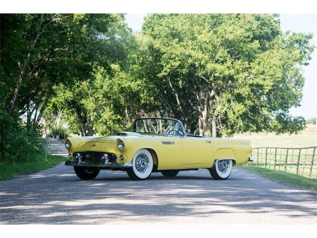 1955 Ford Thunderbird (CC-1453167) for sale in Cadillac, Michigan