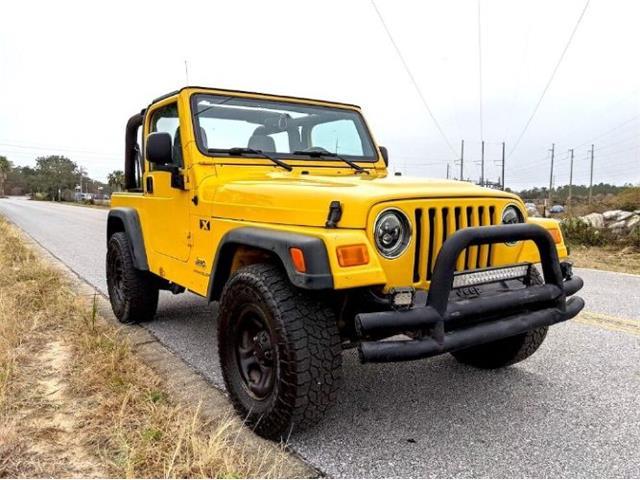 2004 Jeep Wrangler (CC-1453824) for sale in Cadillac, Michigan