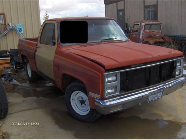 1981 Chevrolet C10 (CC-1455275) for sale in Cadillac, Michigan
