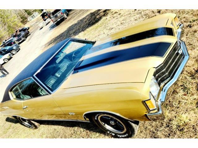 1972 Chevrolet Chevelle (CC-1455339) for sale in Cadillac, Michigan