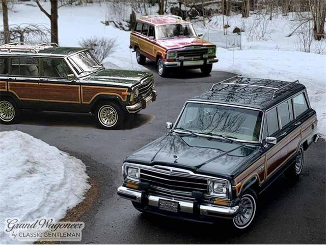 1991 Jeep Grand Wagoneer (CC-1450607) for sale in Bemus Point , New York