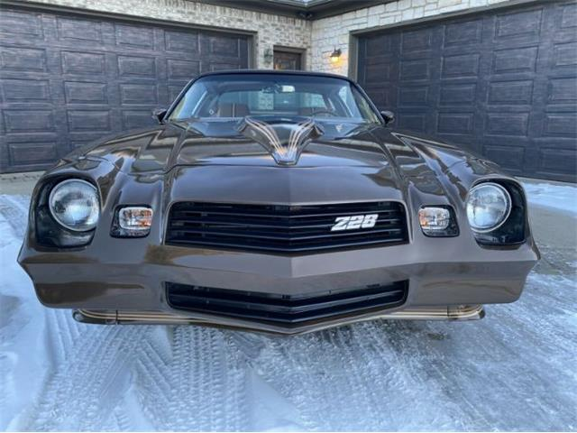 1980 Chevrolet Camaro (CC-1456183) for sale in Cadillac, Michigan